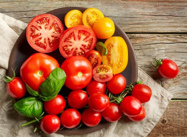 Cà chua là một loại trái cây hay rau